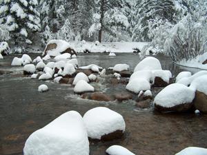 snowlumps1.jpg
